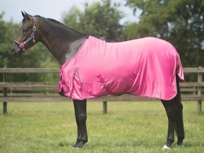 Kan een geschoren paard zonder deken?
