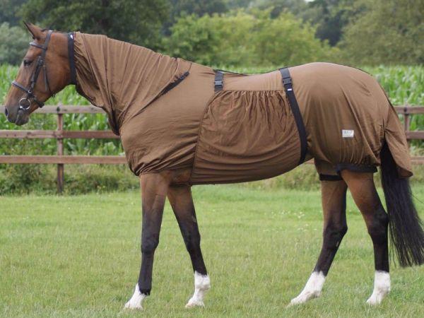 Wanneer een eczeemdeken op een paard?